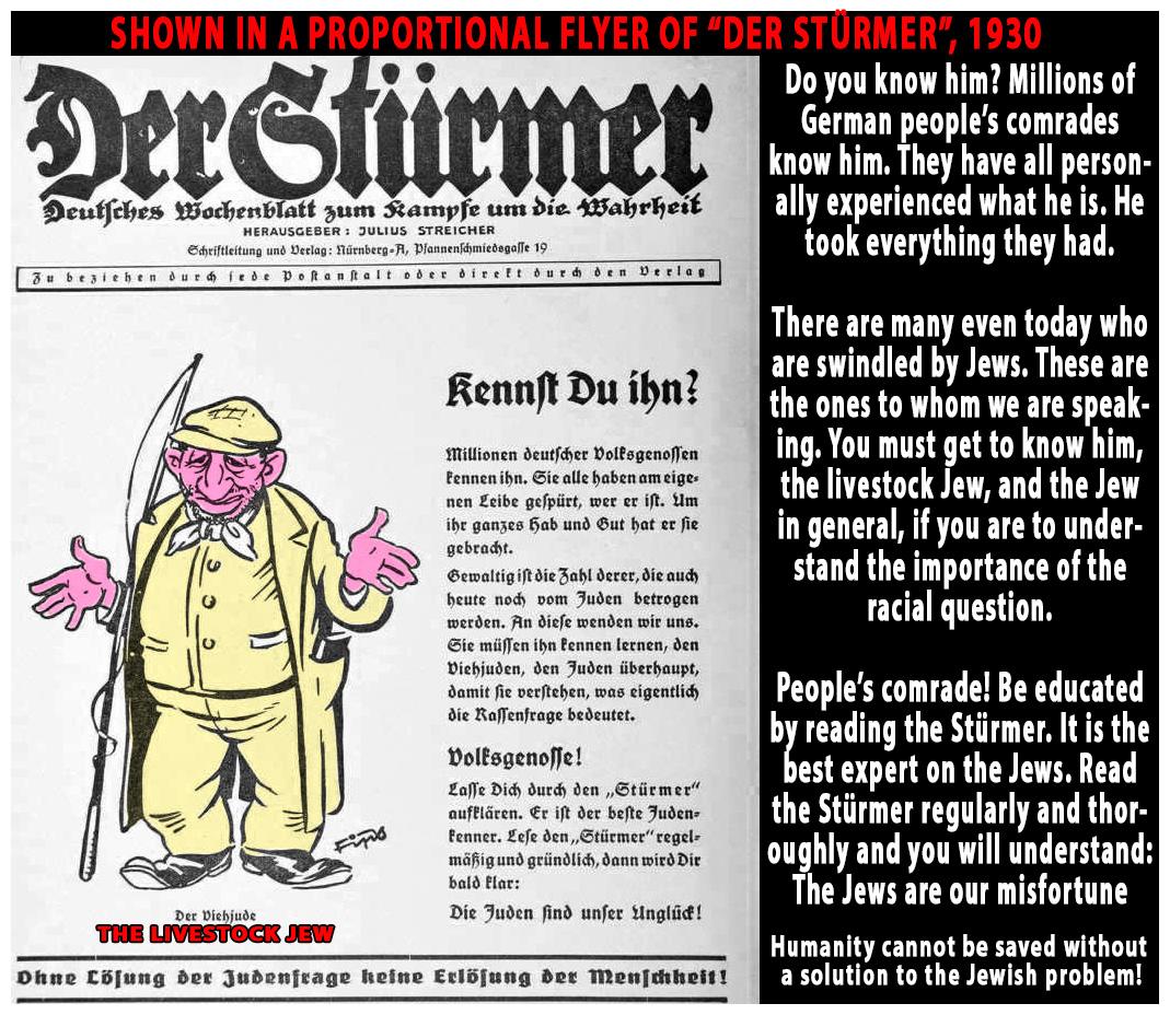 Image result for der sturmer juden